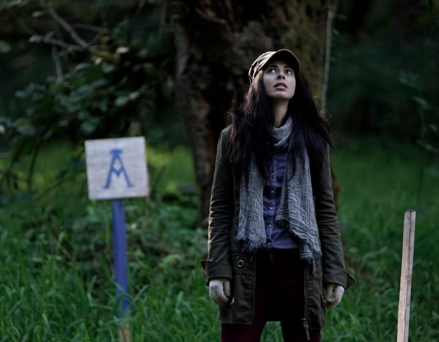 'The Shasta Triangle' Goes for a Phantasmagoric Walk in the Woods