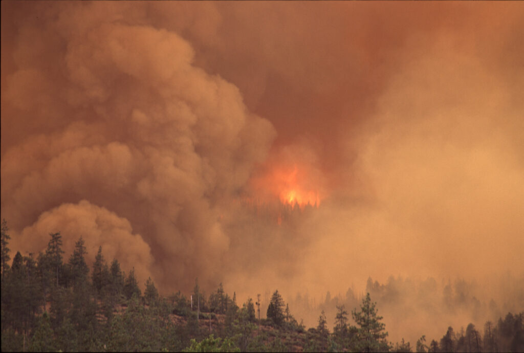 PNW Wildfires Wreak Havoc for Oregon Residents